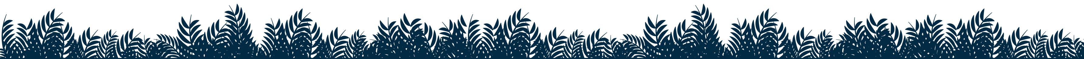 Blue Ferns